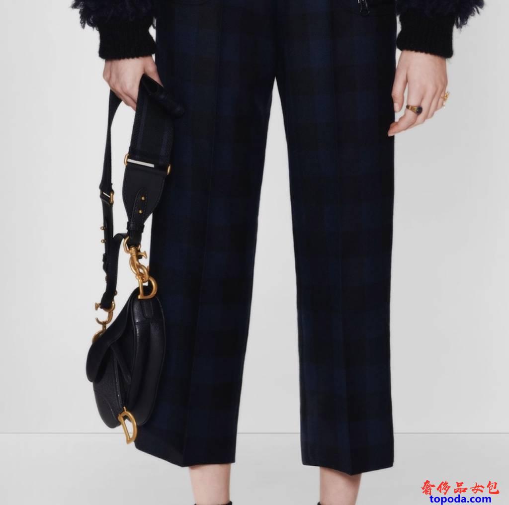 迪奥Saddle Bag